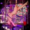 zvezda striptiza-0